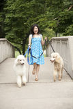 Aziatische Vrouw Royalty-vrije Stock Afbeelding