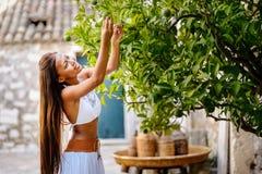 Aziatische vrouw die groene kalk van organisch gekweekte lindeboom in het landelijke Mediterrane plaatsen oogsten Zuivere natuurl Stock Afbeelding