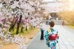 Aziatische vrouw die traditionele Japanse kimono in sakuratuin dragen in tempel Kyoto, Japan stock foto's