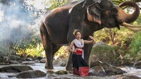 Aziatische vrouw met olifant in kreek, Thailand stock footage