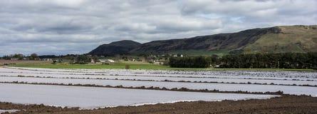 Azienda agricola Fotografia Stock