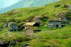 Azienda agricola abbandonata di estate, Norvegia Fotografia Stock
