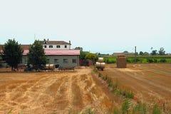 Azienda agricola agricola Provincia Pavia, Italia Fotografia Stock Libera da Diritti