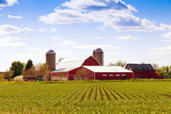 Azienda agricola americana tradizionale Immagine Stock Libera da Diritti