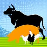 Azienda agricola animale Fotografie Stock Libere da Diritti