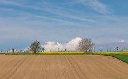 Azienda agricola arabile rurale Campo blu cielo fotografia stock