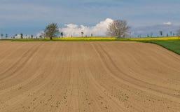 Azienda agricola arabile rurale Campo Cielo blu immagini stock