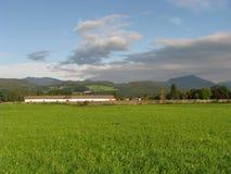 Azienda agricola in Austria Fotografie Stock Libere da Diritti