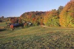 Azienda agricola in autunno, fotografia stock libera da diritti
