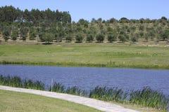 Azienda agricola calma Fotografia Stock