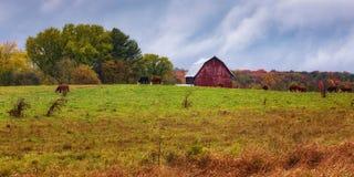 Azienda agricola centrale di Wisconsin Fotografie Stock Libere da Diritti