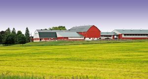 Azienda agricola con il cielo viola Fotografie Stock Libere da Diritti