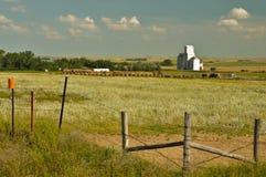 Azienda agricola con l'elevatore di granulo Fotografie Stock