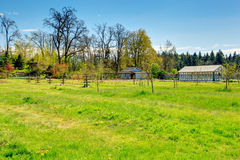 Azienda agricola con la serra Fotografie Stock
