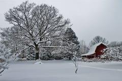 Azienda agricola congelata del Michigan con il granaio rosso Immagine Stock Libera da Diritti