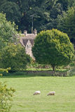 Azienda agricola in Cotswolds Inghilterra Fotografia Stock