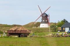 Azienda agricola in Danimarca con un mulino a vento fotografie stock