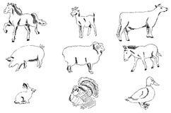 Azienda agricola degli animali domestici Schizzo della matita a mano Fotografia Stock