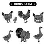 Azienda agricola degli uccelli Immagini Stock Libere da Diritti