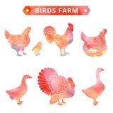 Azienda agricola degli uccelli in acquerello Fotografie Stock