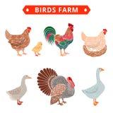 Azienda agricola degli uccelli a colori Immagini Stock Libere da Diritti