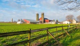 Azienda agricola dei Amish immagini stock libere da diritti
