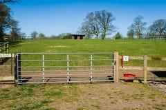 Azienda agricola del cavallo Immagine Stock Libera da Diritti