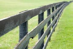 Azienda agricola del cavallo del Kentucky Immagine Stock Libera da Diritti