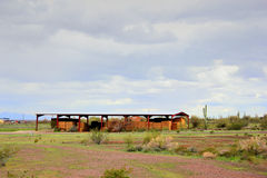 Azienda agricola del deserto Immagine Stock