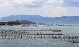 Azienda agricola del gamberetto sul mare Immagine Stock