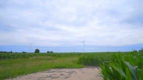 Azienda agricola del generatore eolico sul campo verde Paesaggio delle turbine di vento archivi video