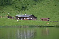 Azienda agricola del lago Fotografia Stock Libera da Diritti
