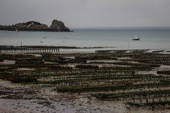 Azienda agricola del mare per la produzione delle ostriche sulla riva del mare di Kelst in Normandia fotografia stock libera da diritti