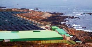 Azienda agricola del mare per produzione dei frutti di mare Immagini Stock Libere da Diritti