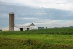 Azienda agricola del Michigan Fotografia Stock Libera da Diritti
