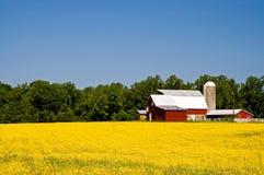 Azienda agricola del paese nella primavera Fotografie Stock Libere da Diritti