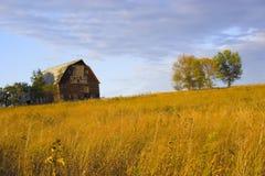 Azienda agricola del pendio di collina Fotografia Stock