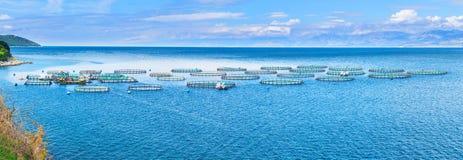 Azienda agricola del pesce di mare Gabbie per il dorado e la spigola di piscicoltura Il wo Fotografia Stock Libera da Diritti