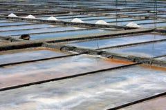 Azienda agricola del sale Fotografie Stock Libere da Diritti
