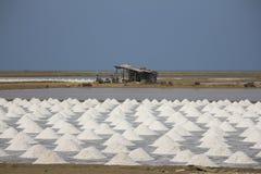 Azienda agricola del sale Fotografia Stock