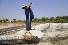 Azienda agricola del sale Fotografia Stock Libera da Diritti