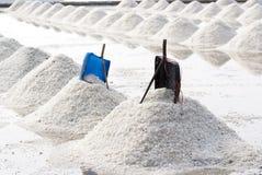 Azienda agricola del sale in Tailandia Immagine Stock