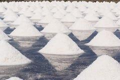 Azienda agricola del sale in Tailandia Immagini Stock