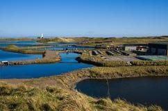 Azienda agricola del sud dell'ostrica di Walney Immagine Stock