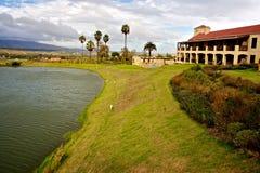 Azienda agricola del vino in Sudafrica Immagine Stock Libera da Diritti