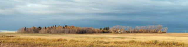 Azienda agricola dell'Alberta in autunno Fotografia Stock Libera da Diritti