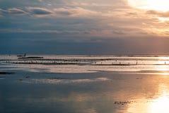 Azienda agricola dell'alga al tramonto Fotografia Stock