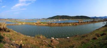 Azienda agricola dell'industria della pesca Fotografia Stock