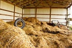 Azienda agricola dell'oscillazione della gomma Fotografia Stock