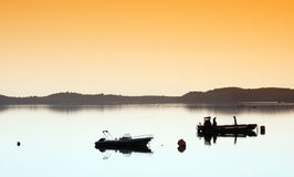 Azienda agricola dell'ostrica nella costa della Corsica Immagini Stock Libere da Diritti